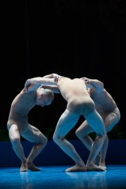 Ballet Biarritz Vaison la Romaine (9)